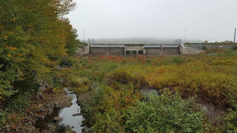 A wetland in front of a dam