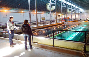 A man and a woman in a drinking water treatment plant