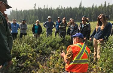 A forest manager talks about the effects of fire and forest harvesting on landscapes