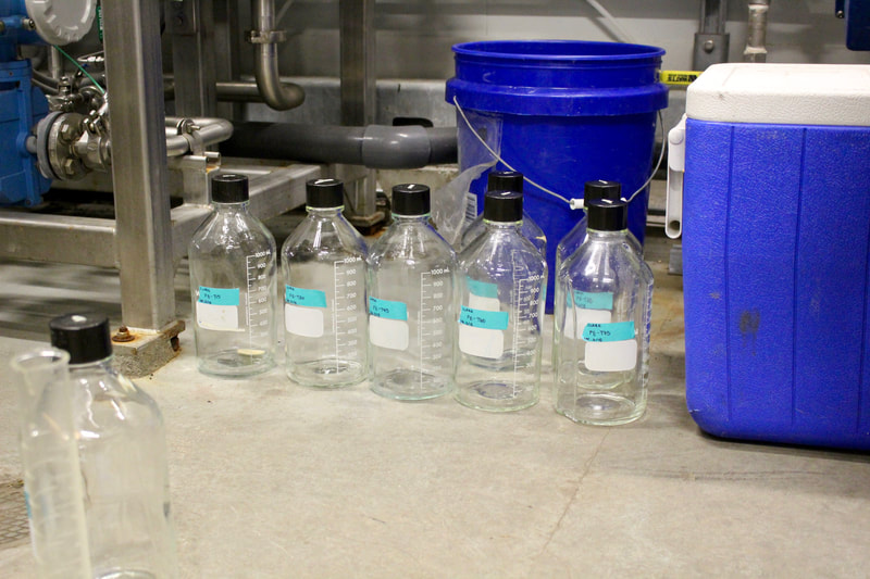 Water sampling bottles lined up ready to sample