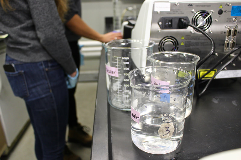 3 beakers with water in a lab